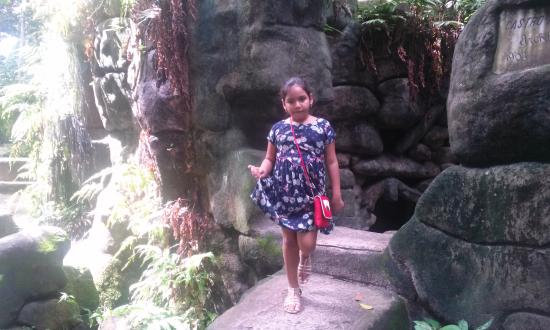 construir gruta jardim : construir gruta jardim: Rodrigues Alves – Jardim Botanico da Amazonia, Belem – TripAdvisor