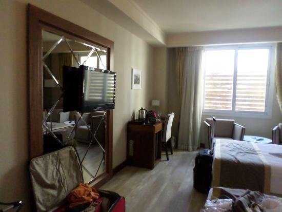 Adana Plaza Hotel : Room view
