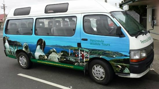 Peninsula Wildlife Tours