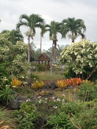 Old Kona Airport State Recreation Area : Walking Path beauty