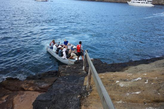 Tagus Cove landing area