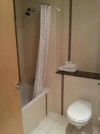Ardmore Hotel: Accommodating Bathroom