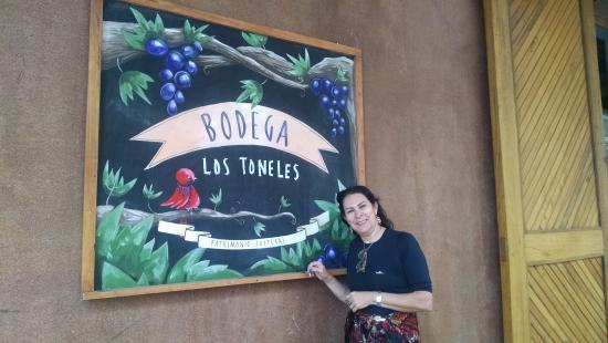 Argentina Wine Tours : Vinhos e uvas