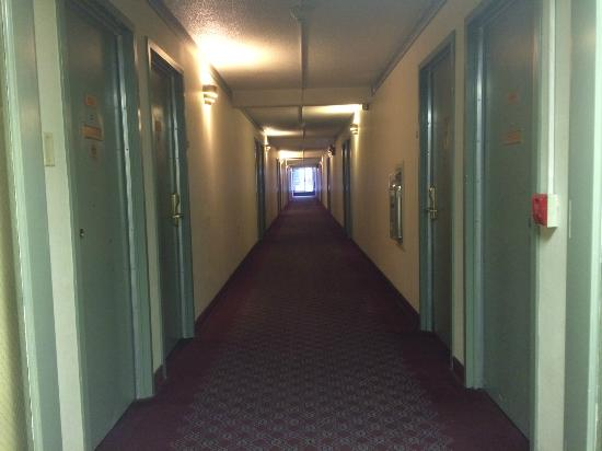 Quality Inn Airport: Hallway