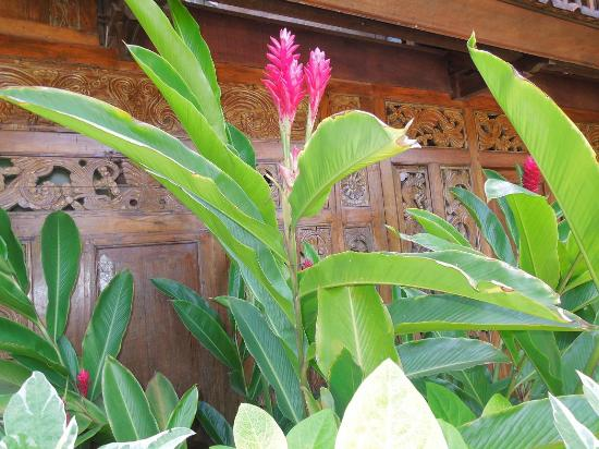 Pondok Sari Beach Bungalow Resort & Spa: Detail of exterior carved paneling and native ginger plants
