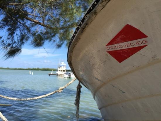 Fisherman's Inn: Bioluminescent Lagoon