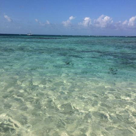 Goff's Caye : Most beautiful waters in the world!