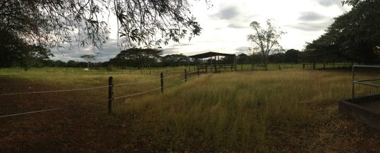 Painted Pony Guest Ranch - Costa Rica: What a view
