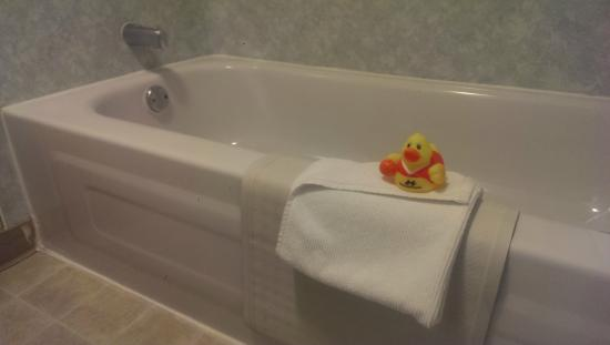 Accent Inn Kelowna : Rubber duck was a nice touch