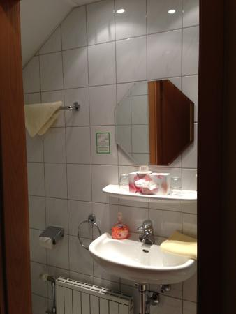 Gästehaus Eberlein: bathroom with tiny sink but sufficiently equipped