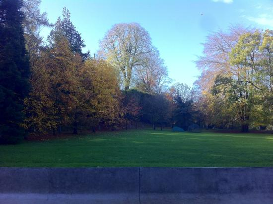 Fresco Eaterie and Bistro: Beautiful autumnal scenery from restaurant