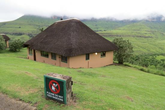 Thendele Hutted camp: het huis