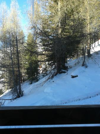 Alpen Village Hotel: vista dalla camera