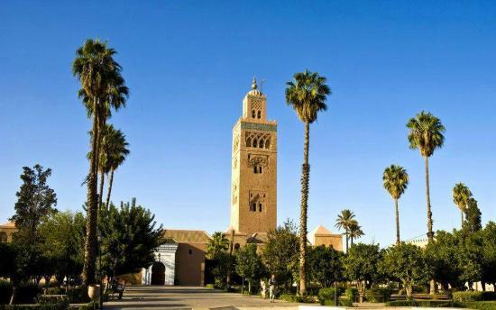Marocco Trips