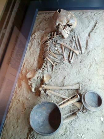 Varna Archaeological Museum: A découvrir