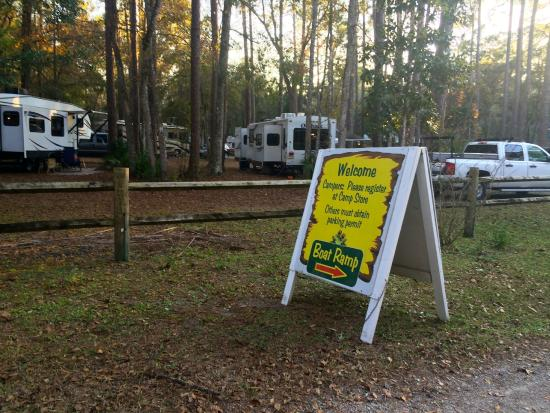 Chassahowitzka River Campground: Wooded sites