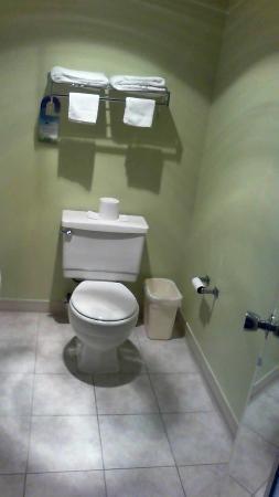 Days Inn Waynesboro: Bathroom is clean.