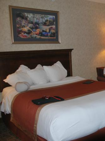 Hawthorn Suites by Wyndham Cincinnati: room