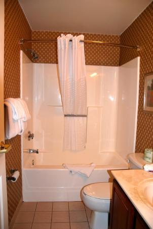 Hawthorn Suites by Wyndham Cincinnati : bath