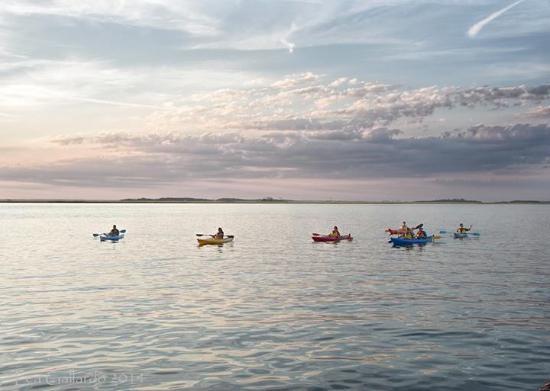 Amelia Island Kayak Excursions: Amelia River Sunset Tour