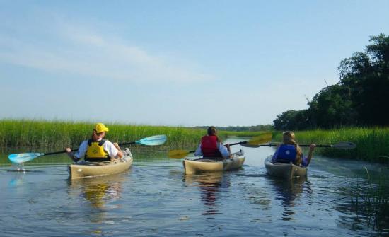Amelia Island Kayak Excursions: Paddling Egan's Creek