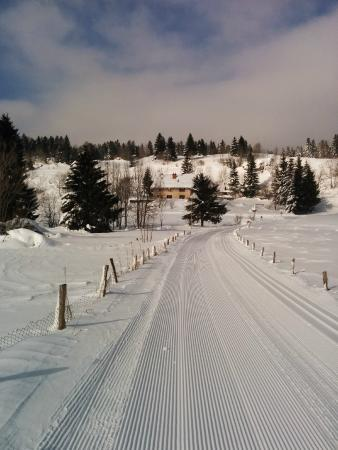 Le Castel Blanc : Ski tracks and hotel in background