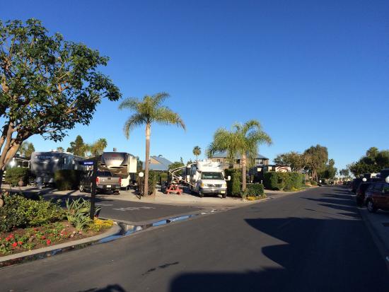 Chula Vista RV Resort: Street view
