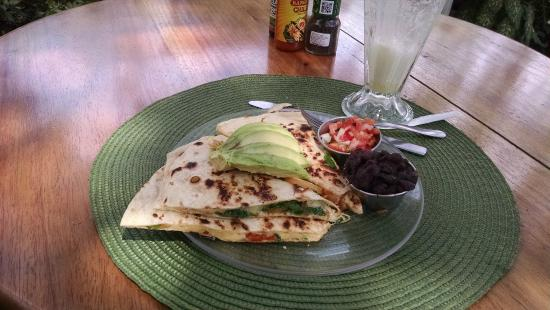 Robin's : Veggie quesadilla and pineapple/banana/coconut water smoothie