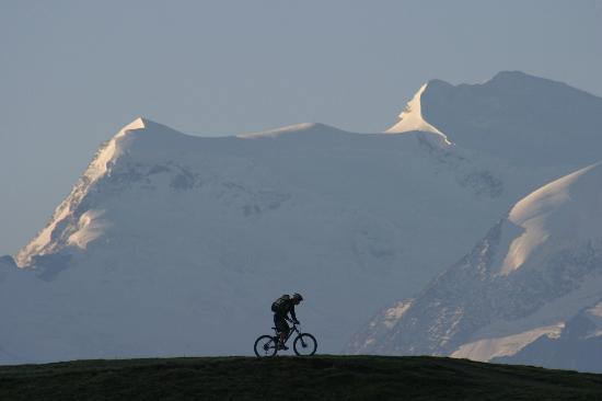 Neige Aventure School & Sport Shop : Join us in summer for mountain biking