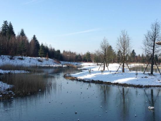 Hattigny, France: Vue de la rivière et du parc devant l'aqua mundo
