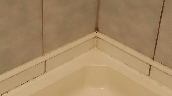 Qubus Hotel Wroclaw: Czy tak powinna wyglądać kabina prysznicowa w 4* hotelu?!