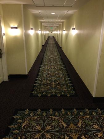 Staybridge Suites Seattle North-Everett : Hallway