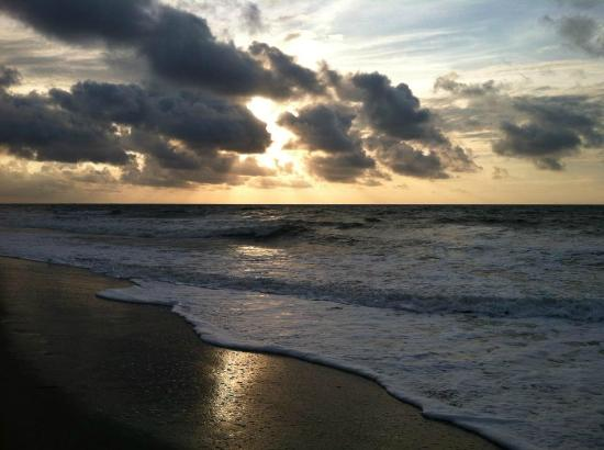 Ocean Park Resort, Oceana Resorts: Early morning walk on the beach