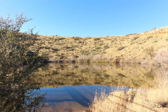 Safford, AZ: Frye Mesa Reservoir