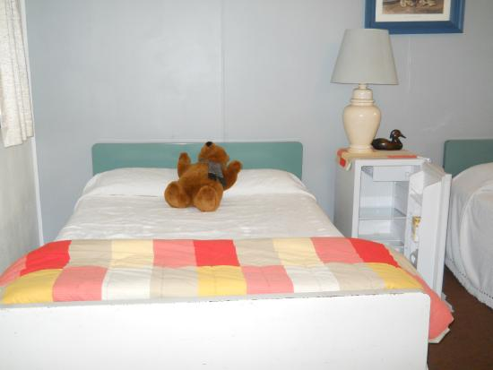 Travelers Rest: Our room came with Teddy Bears
