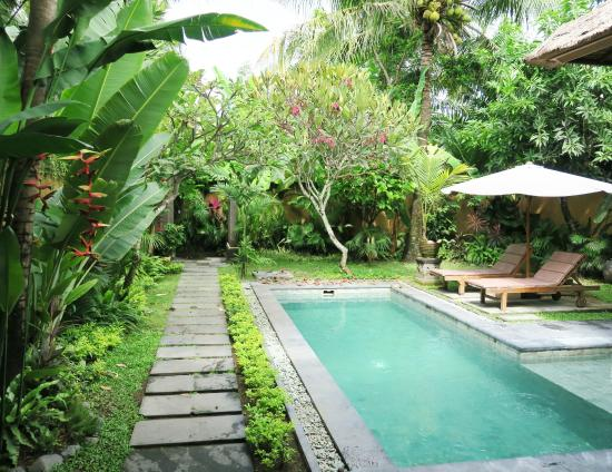 The Buah Bali Villas Tripadvisor