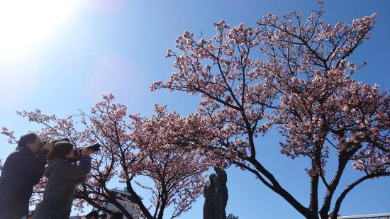 Atami Kaihin Park