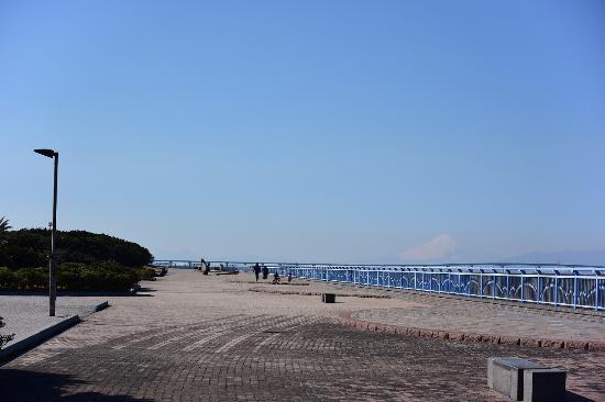 柚ケ浦海浜公園