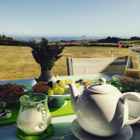 Tauranga Lodge: Breakfast looking out at Mount Maunganui