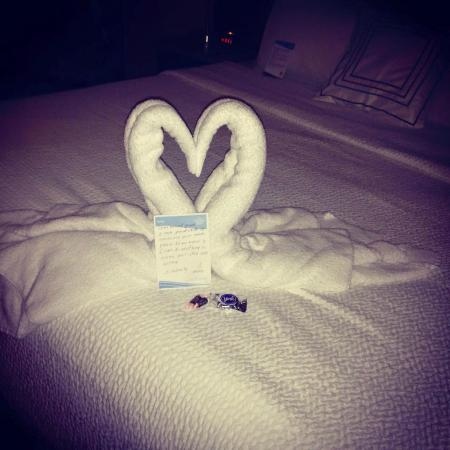 Fairfield Inn & Suites Nashville Smyrna: Kissing Swans on our bed at check-in and a hand written note from our housekeeper Mina.