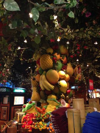 Rainforest Cafe: Fruit tree