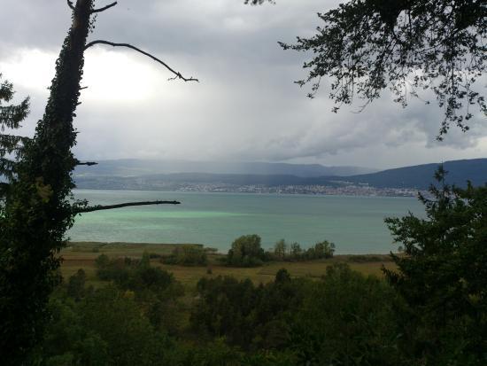 Lac de Neuchâtel : Neuchâtel - lac - vue de La Grande Cariçaie