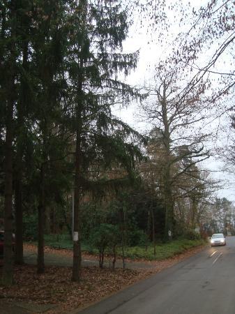Wyndham Garden Lahnstein Koblenz: Парк у отеля