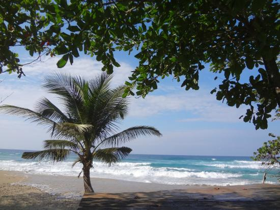 Cabarete Maravilla Eco Lodge & Beach: View
