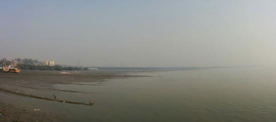 Sewri Jetty: Sewri