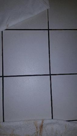 Village Hotel Maidstone: Dirty gaps in tiles