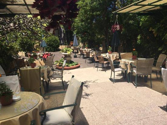 Cafe Orquidea Puerto De La Cruz