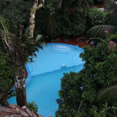 La Casa Fitzcarraldo: Pool from the tree house
