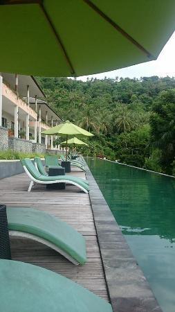 the pool overlooking the greenery