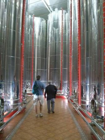 Nunez de Prado- Fabrica de Aceite de Oliva Ecologico: Storage tanks, tour with Mr Nunez